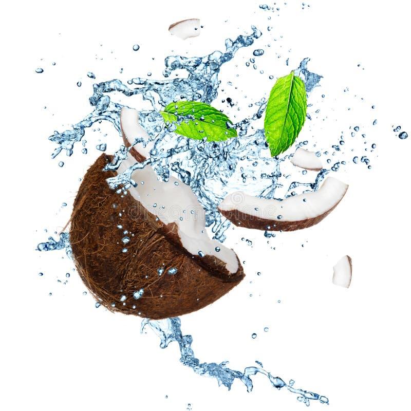 Καρύδα με το ράντισμα του νερού στοκ εικόνα με δικαίωμα ελεύθερης χρήσης