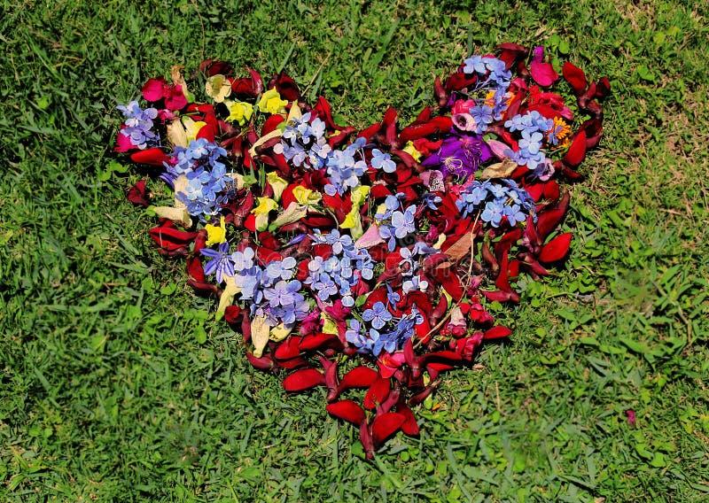 Καρδιά αγάπης φιαγμένη από λουλούδια στοκ εικόνες