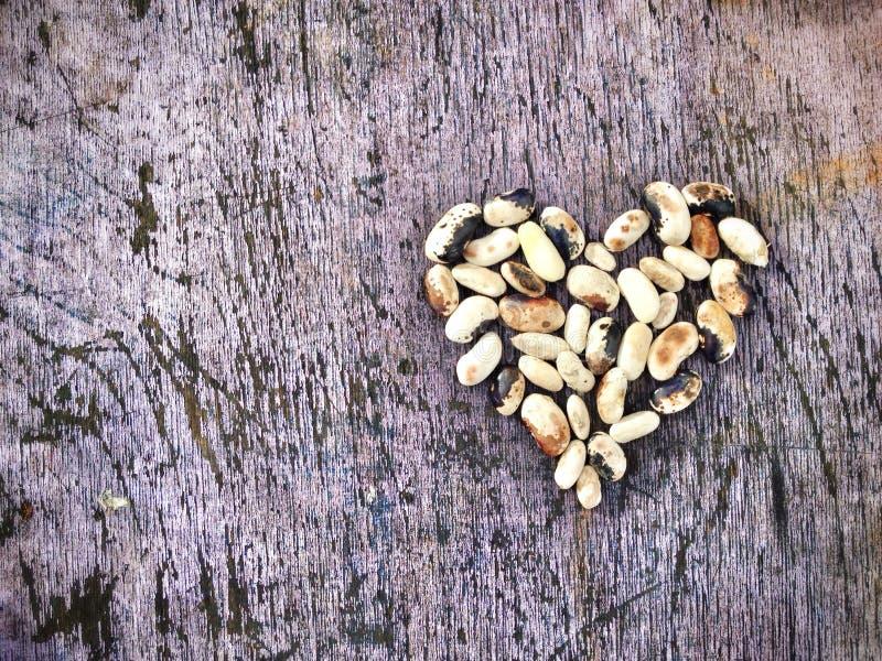 καρδιά από τα φασόλια στοκ εικόνες με δικαίωμα ελεύθερης χρήσης