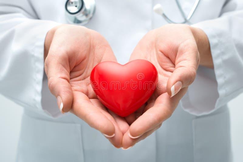 Καρδιά εκμετάλλευσης γιατρών στοκ φωτογραφία με δικαίωμα ελεύθερης χρήσης