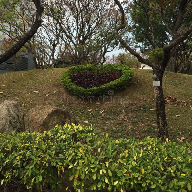 Καρδιά κήπου στοκ φωτογραφία με δικαίωμα ελεύθερης χρήσης