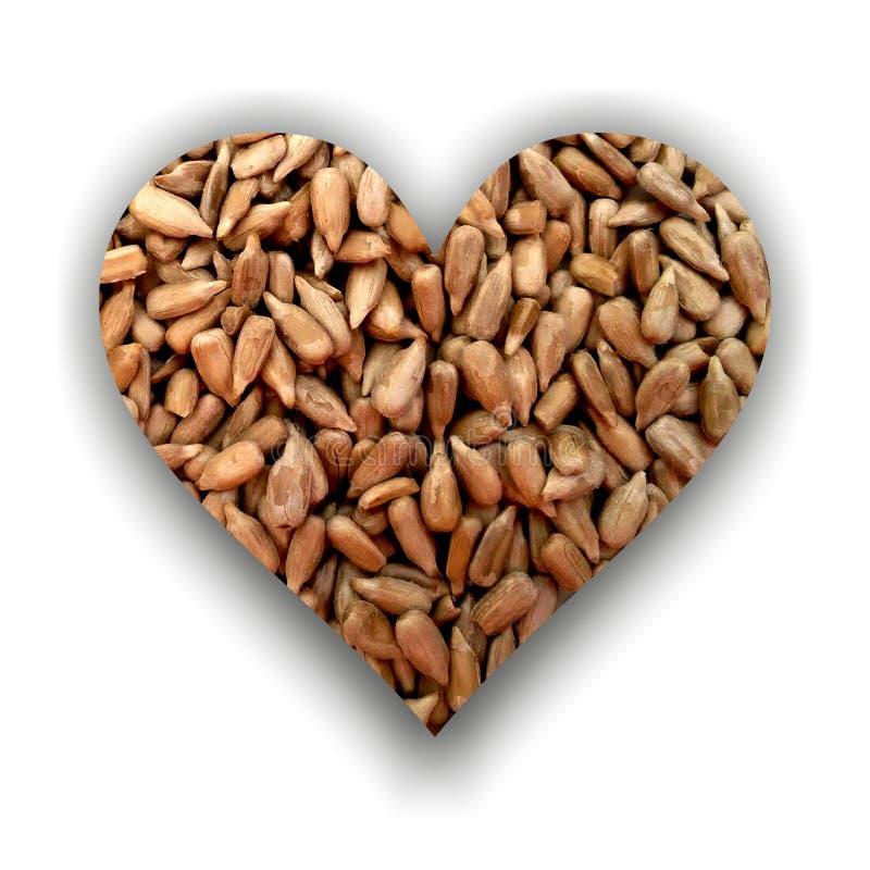 Καρδιά που γεμίζουν με τους ξεφλουδισμένους σπόρους ηλίανθων στοκ φωτογραφίες