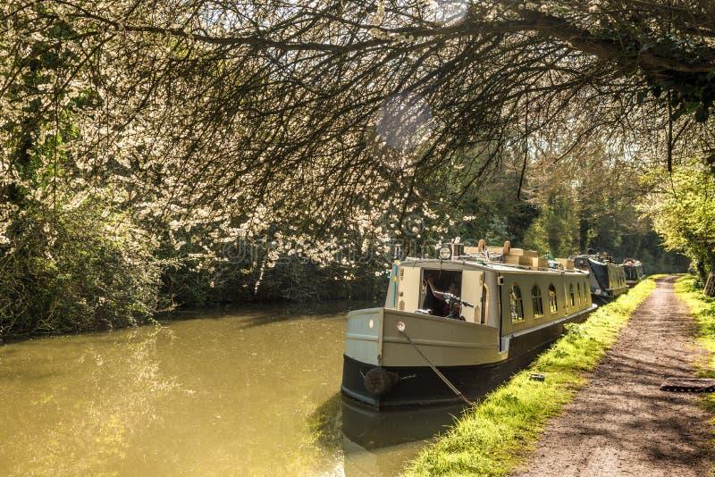 Καρδιά της Αγγλίας - στενή βάρκα στοκ φωτογραφίες με δικαίωμα ελεύθερης χρήσης