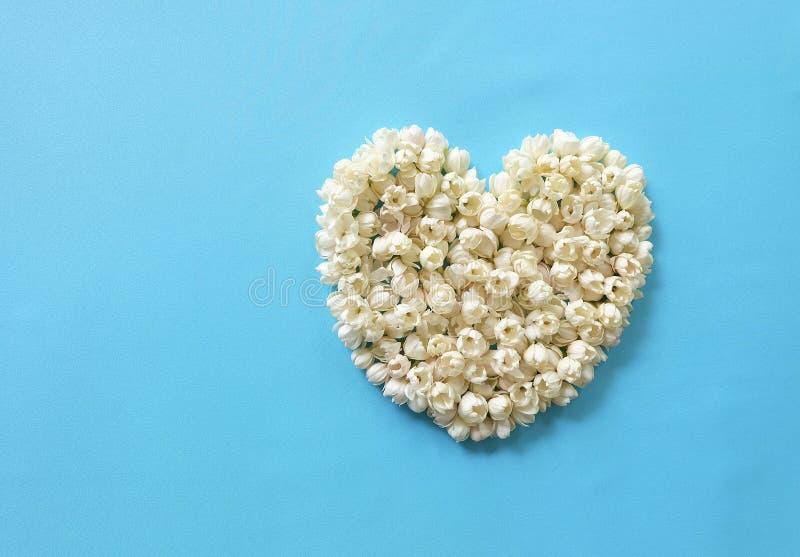 Καρδιά των λουλουδιών της Jasmine στοκ εικόνες