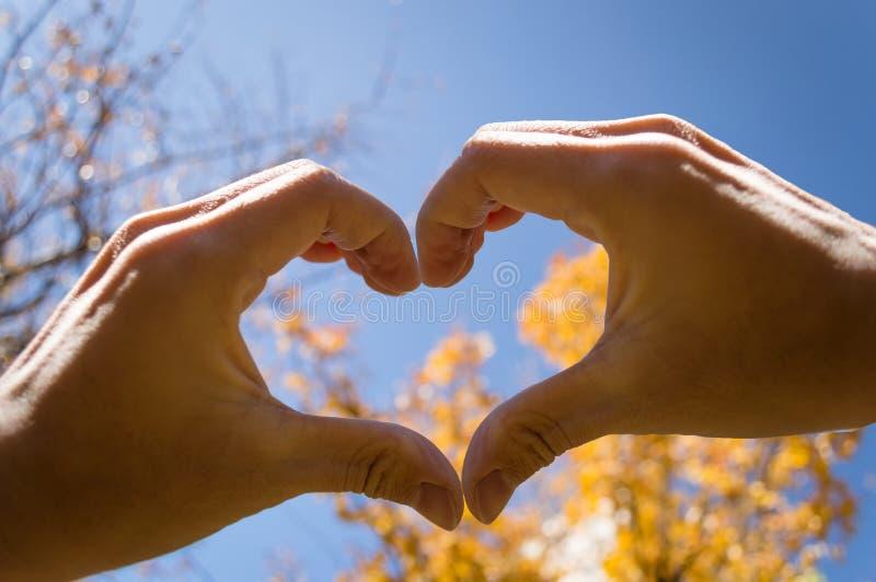 Καρδιά χεριών φθινοπώρου στοκ φωτογραφίες