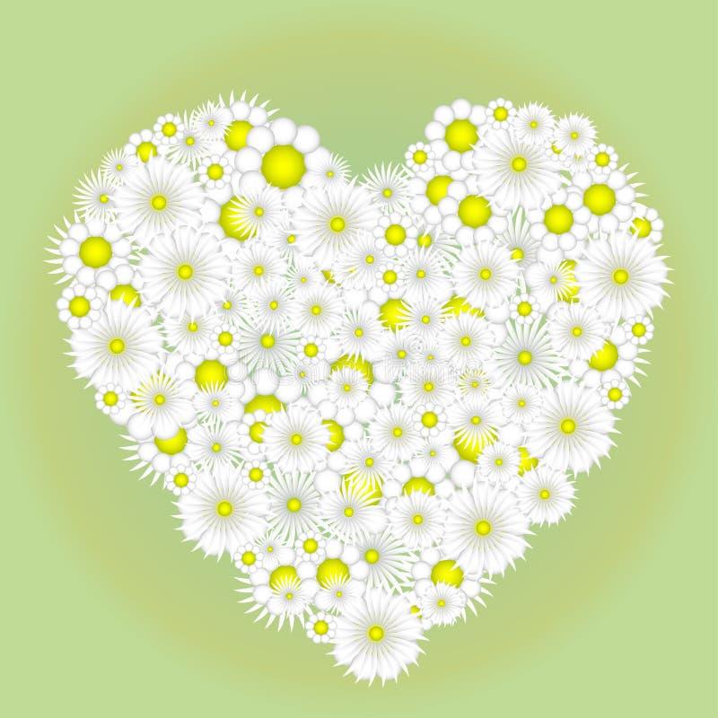 Καρδιά Chamomile ελεύθερη απεικόνιση δικαιώματος