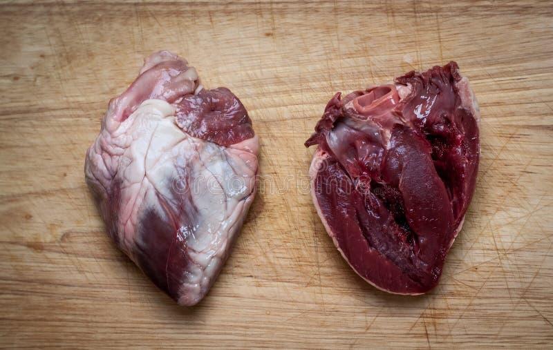 Καρδιές αρνιών στοκ εικόνες
