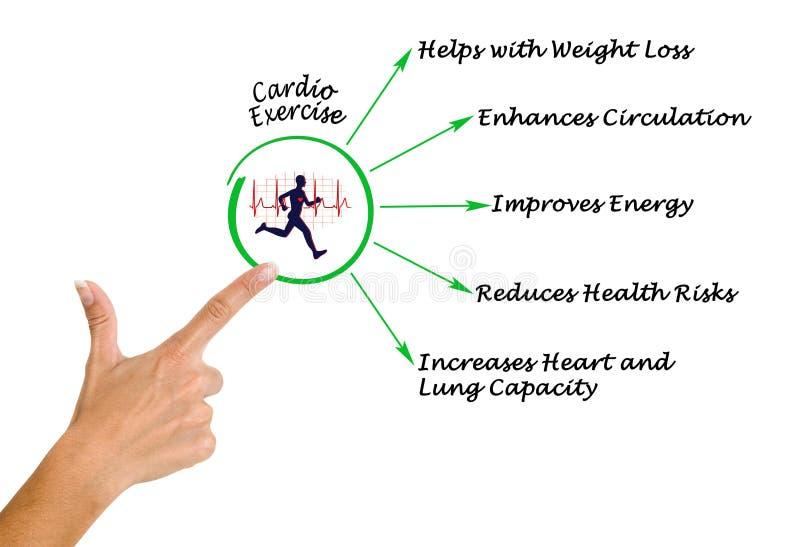 καρδιο άσκηση στοκ εικόνα