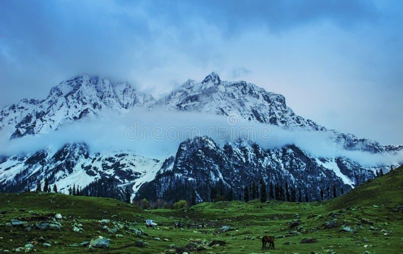 Κασμίρ Gulmarg με τα βουνά στοκ φωτογραφία