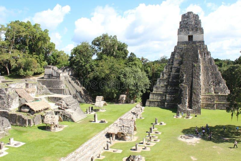 Κατάπληξη Tikal στη Γουατεμάλα στοκ εικόνες