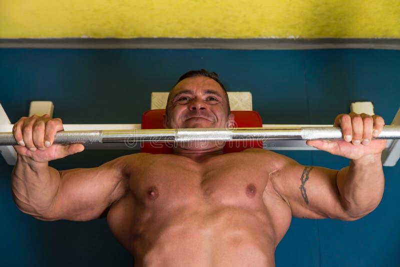Κατάρτιση Bodybuilder στοκ εικόνες