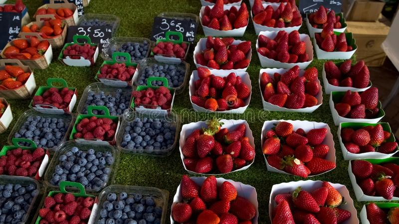 Κατάταξη των οργανικών φρέσκων βατόμουρων και των φραουλών στην τοπική αγορά φρούτων στοκ εικόνες με δικαίωμα ελεύθερης χρήσης