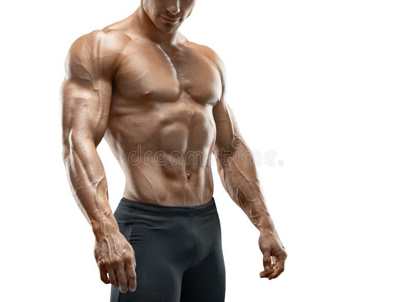 Κατάλληλο νέο bodybuilder που απομονώνεται στο άσπρο υπόβαθρο στοκ φωτογραφία