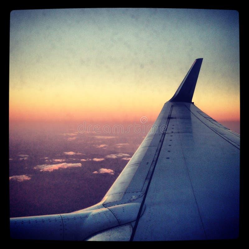Κατά την πτήση πετώντας στοκ φωτογραφία με δικαίωμα ελεύθερης χρήσης