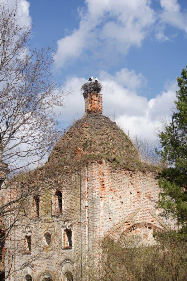 Κατέστρεψε τη Ορθόδοξη Εκκλησία με μια φωλιά των πελαργών στοκ εικόνες