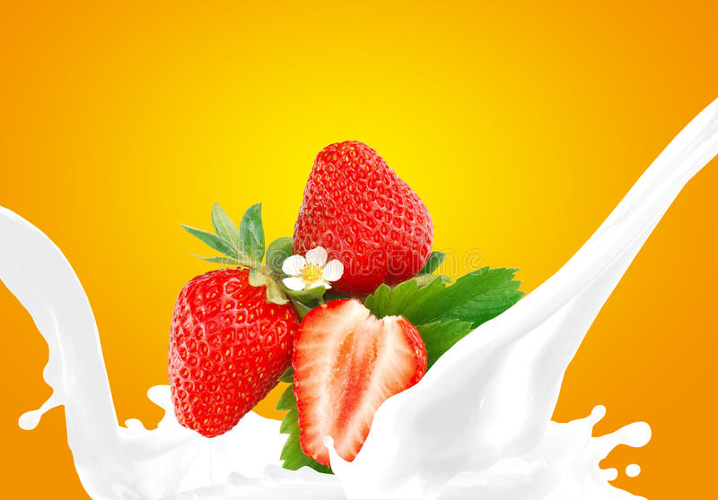 Καταβρέχοντας γάλα με τη φράουλα στοκ φωτογραφία με δικαίωμα ελεύθερης χρήσης