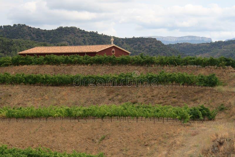 καταλανικά βουνά κήπων στοκ φωτογραφία με δικαίωμα ελεύθερης χρήσης