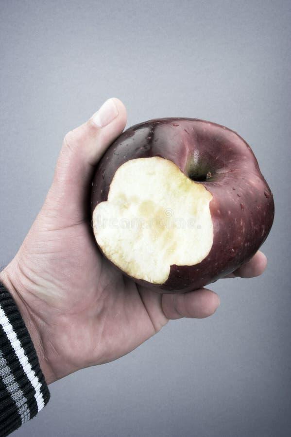κατανάλωση μήλων στοκ φωτογραφία με δικαίωμα ελεύθερης χρήσης