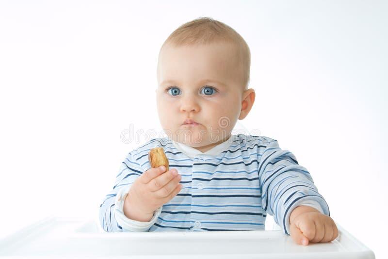 κατανάλωση μπισκότων στοκ φωτογραφίες