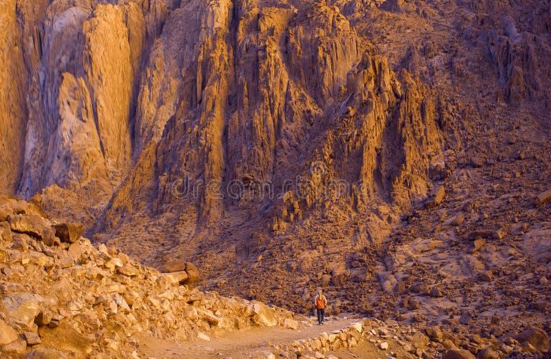 Καταπληκτική ανατολή Sinai στο βουνό, όμορφη αυγή στοκ φωτογραφίες με δικαίωμα ελεύθερης χρήσης