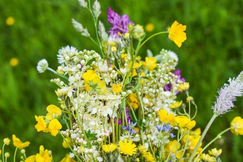 Καταπληκτική ανθοδέσμη των πολύχρωμων άγριων λουλουδιών με το φρέσκο πράσινο υπόβαθρο στοκ εικόνες
