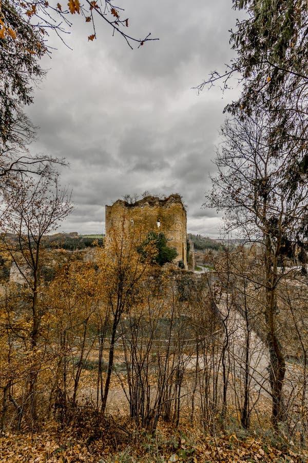 Καταπληκτική εικόνα του κάστρου Franchimont κατά την άποψη καταστροφών από το δάσος στοκ εικόνα με δικαίωμα ελεύθερης χρήσης