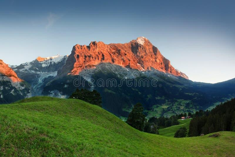 Καταπληκτικό ελβετικό αλπικό τοπίο βουνών, πράσινοι τομείς και υψηλά βουνά με τις χιονώδεις αιχμές στο υπόβαθρο, Grindelwald, Ίντ στοκ εικόνες