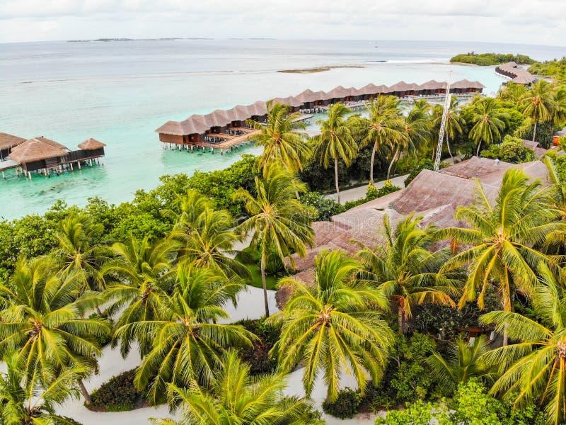 Καταπληκτικό νησί στις Μαλδίβες, τα όμορφα τυρκουάζ νερά και την άσπρη αμμώδη παραλία με το υπόβαθρο μπλε ουρανού για τις διακοπέ στοκ εικόνες