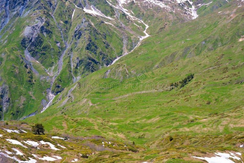 Καταπληκτικό πράσινο φαράγγι στα βουνά στοκ εικόνες