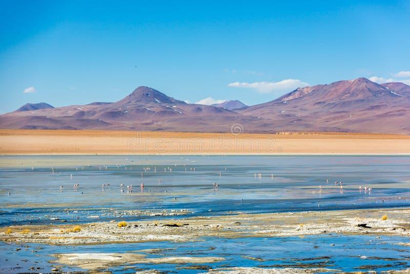 Καταπληκτικό σενάριο τοπίων στη Βολιβία, Νότια Αμερική στοκ φωτογραφίες με δικαίωμα ελεύθερης χρήσης