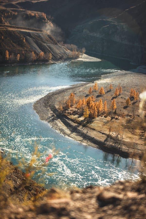 Καταπληκτικό τοπίο με τα βουνά, όμορφος κάμπτοντας ποταμός, δάσος φθινοπώρου σε Altai Κοιλάδα βουνών στοκ φωτογραφία