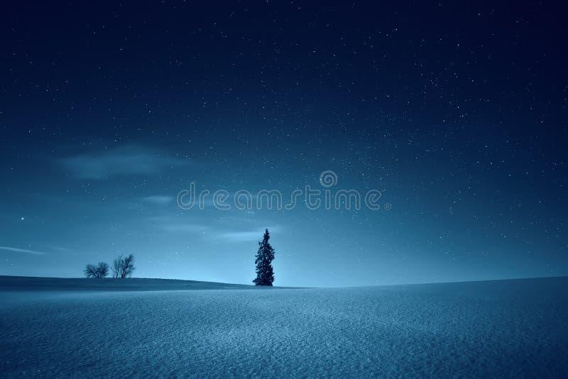 Καταπληκτικό τοπίο νύχτας χειμώνας χιονιού σκηνής νύχτας σπιτιών Σύνολο ουρανού των αστεριών ο στοκ εικόνες