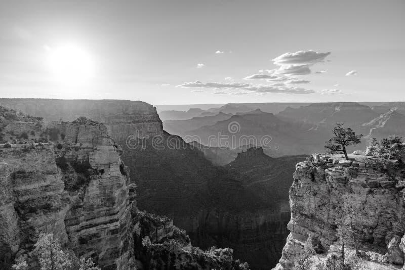 Καταπληκτικό τοπίο τοπίων στο ηλιοβασίλεμα από νότιο πλαίσιο του μεγάλου εθνικού πάρκου φαραγγιών, Αριζόνα, Ηνωμένες Πολιτείες στοκ εικόνα με δικαίωμα ελεύθερης χρήσης