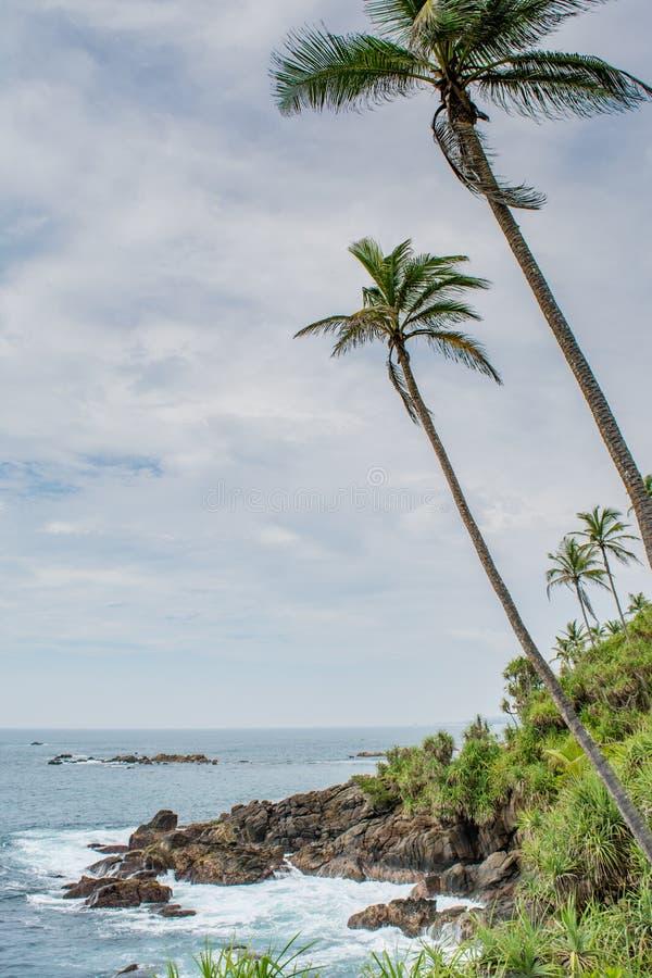 Καταπληκτική άγρια παραλία στη Σρι Λάνκα στοκ εικόνες