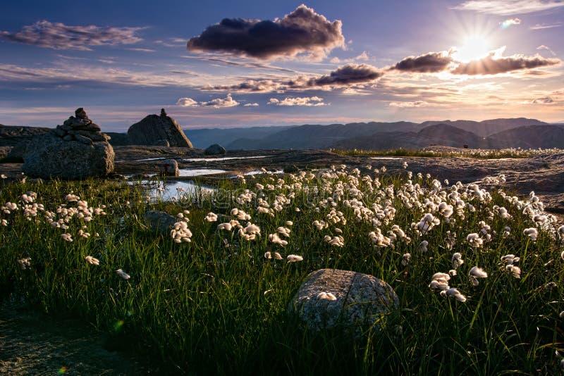 Καταπληκτική άποψη της βόρειας φύσης, τρόπος σε Kjeragbolten Νορβηγία, Ευρώπη στοκ φωτογραφίες με δικαίωμα ελεύθερης χρήσης