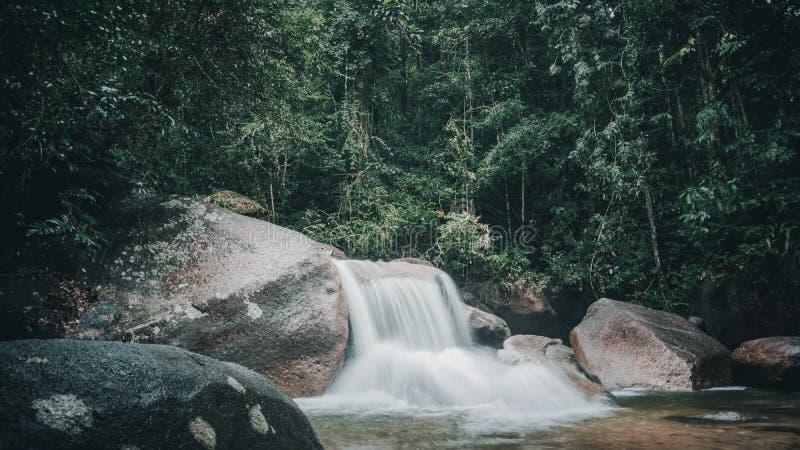 Καταρράκτες βαθιά στη ζούγκλα στοκ εικόνες με δικαίωμα ελεύθερης χρήσης
