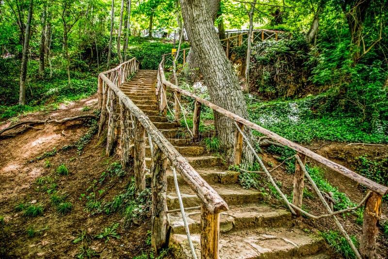 Καταρράκτες στους ποταμούς και το συμπαθητικό δάσος στοκ φωτογραφίες