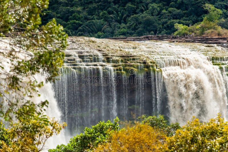 Καταρράκτες EL Sapo Canaima, ποταμός Carrao Εθνικό πάρκο Canaima, κράτος BolÃvar στοκ φωτογραφίες