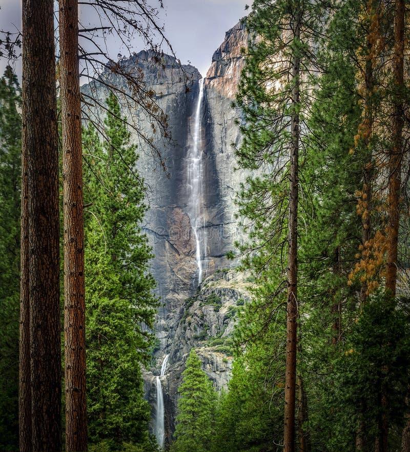 Καταρράκτες Yosemite στοκ εικόνες