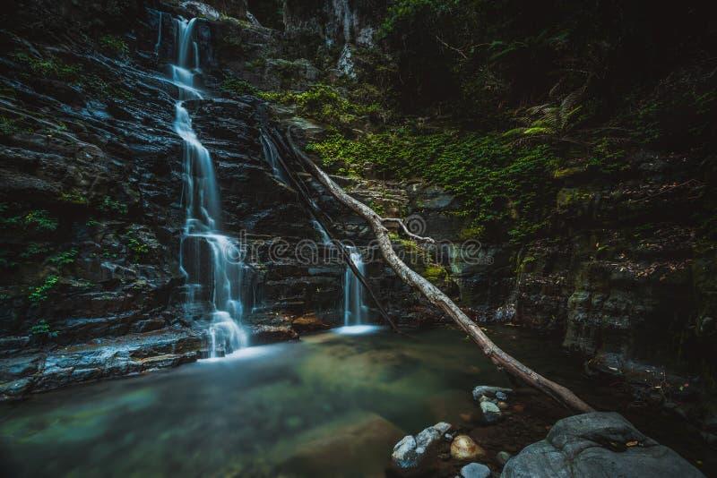 Καταρράκτης και κολυμπώντας τρύπα στην αγριότητα βουνών στοκ φωτογραφίες με δικαίωμα ελεύθερης χρήσης