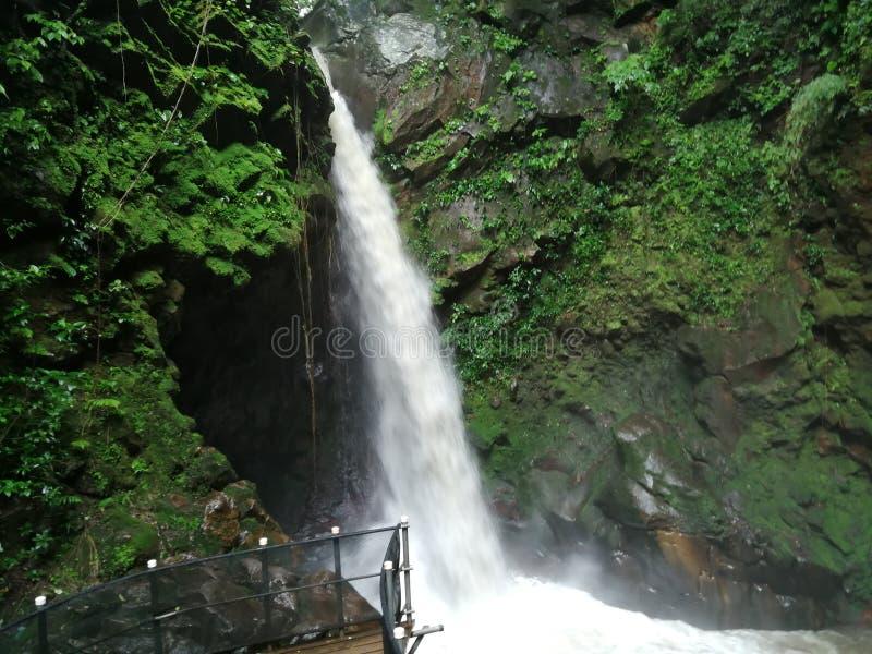 Καταρράκτης, Κόστα Ρίκα Rincon de Λα vieja εθνικό Πάρκο στοκ φωτογραφία με δικαίωμα ελεύθερης χρήσης