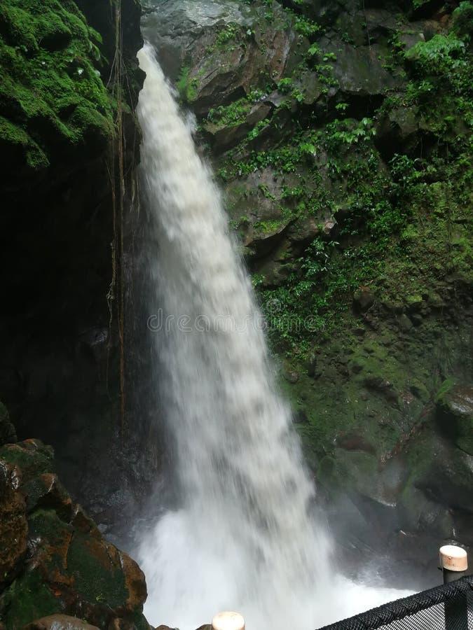 Καταρράκτης, Κόστα Ρίκα Rincon de Λα vieja εθνικό Πάρκο στοκ φωτογραφίες