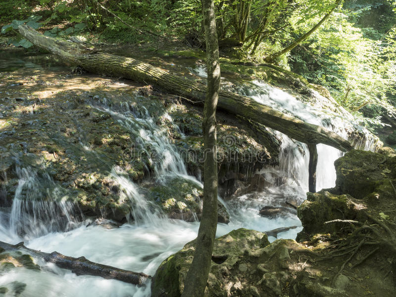 Καταρράκτης Λα Vaioaga στο εθνικό πάρκο Cheile Nerei, Ρουμανία στοκ εικόνες με δικαίωμα ελεύθερης χρήσης