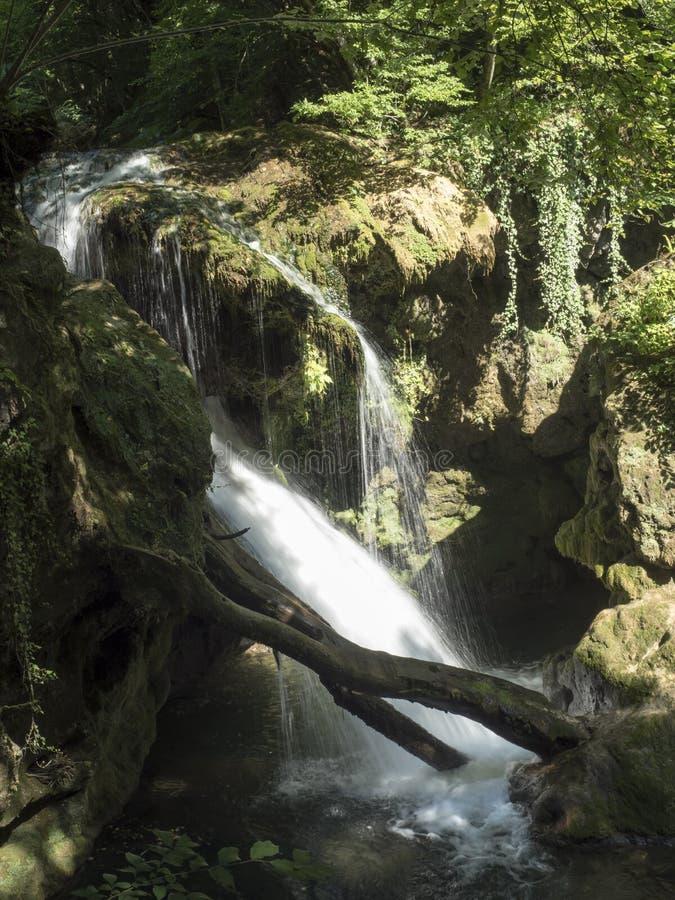 Καταρράκτης Λα Vaioaga στο εθνικό πάρκο Cheile Nerei, Ρουμανία στοκ φωτογραφία με δικαίωμα ελεύθερης χρήσης