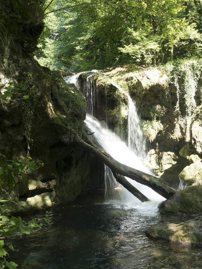 Καταρράκτης Λα Vaioaga στο εθνικό πάρκο Cheile Nerei, Ρουμανία στοκ εικόνα