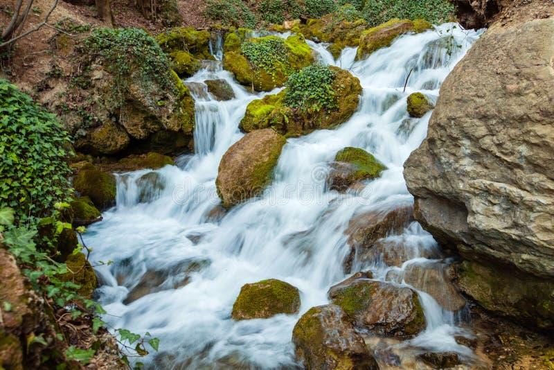 Καταρράκτης μεταξύ των πετρών και των πράσινων εγκαταστάσεων την άνοιξη στοκ εικόνες