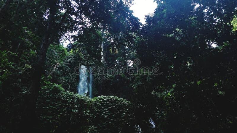 Καταρράκτης που κρύβεται πίσω από ένα πυκνό δάσος στοκ εικόνες