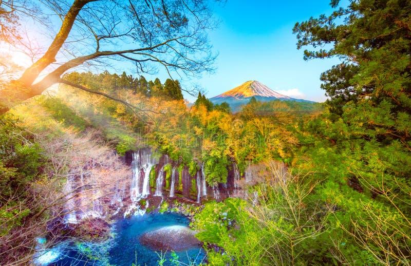 Καταρράκτης Σιράιτο στους νοτιοδυτικούς πρόποδες του όρους Φούτζι, Σιζουόκα, Ιαπωνία στοκ εικόνα με δικαίωμα ελεύθερης χρήσης