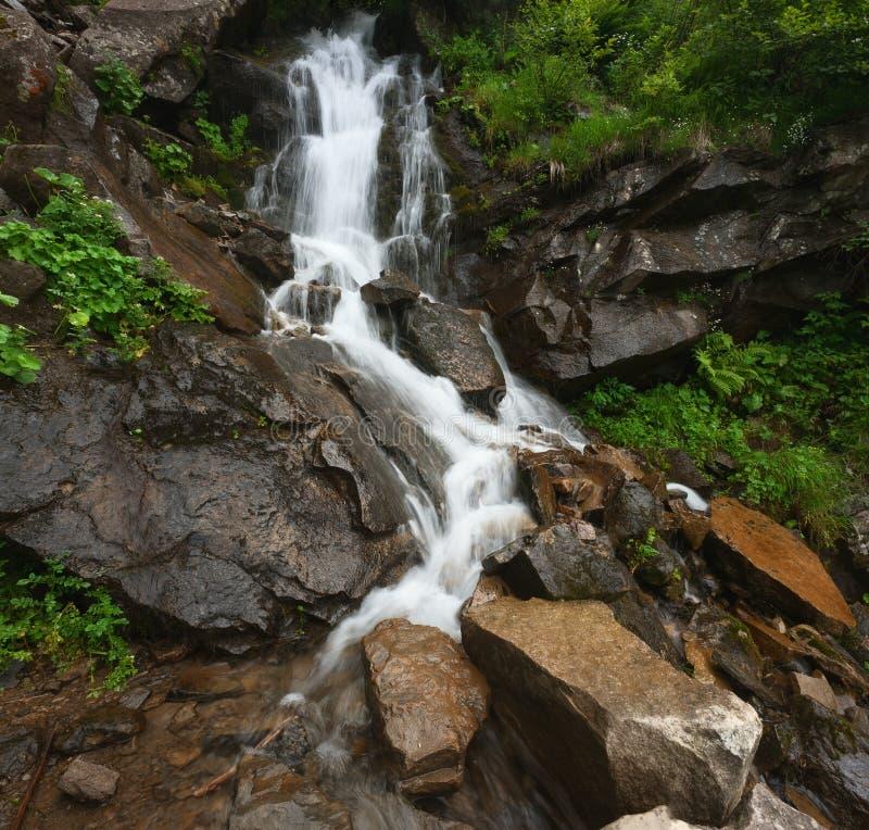 Καταρράκτης στα βουνά Τοπίο θερινών βουνών στοκ φωτογραφία με δικαίωμα ελεύθερης χρήσης