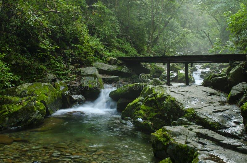Καταρράκτης στον ποταμό βουνών στο θερινό δάσος στο ηλιοβασίλεμα Φως, υδρονέφωση στοκ φωτογραφία με δικαίωμα ελεύθερης χρήσης